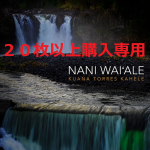 【20枚以上購入専用】Kuana Torres Kahele /NANI WAI'ALE